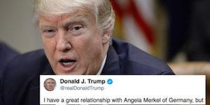Trump and tweet